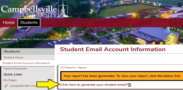 Picture of the Tigernet website pointing out where to click to view the report with the email information